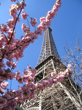 The Eiffel Tower in April.jpg