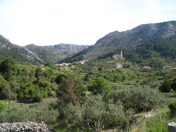 Hvar countryside.jpg